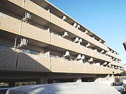クレセントM[1階]の外観