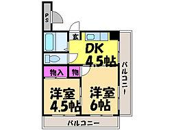 愛媛県松山市山越1丁目の賃貸マンションの間取り