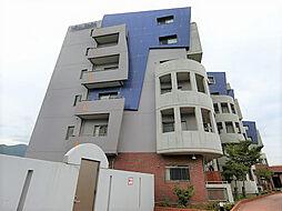 ニューガイア上石田[401号室]の外観