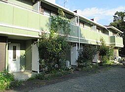 神奈川県相模原市南区上鶴間3丁目の賃貸マンションの外観