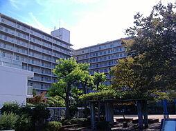 ファミール堺東