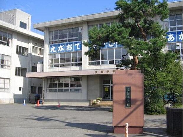 【小学校】立待小学校まで705m