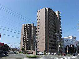 サーパス西塚柳通り