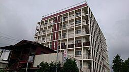 早川パインクレスト