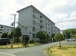 浅香山住宅5棟[5階]の外観