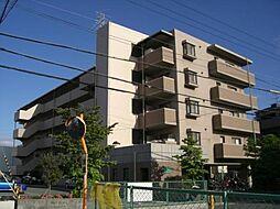 スペランツァ松ヶ丘[1階]の外観