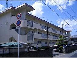 愛媛県松山市吉藤3丁目の賃貸マンションの外観