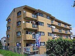 サウスビレッジ88[4階]の外観