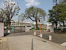 小学校大泉学園桜小学校まで393m