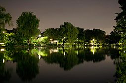 石神井公園石神...