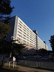 UR千島団地[6階]の外観