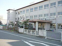 安井小学校まで...