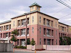 荒井小学校…約840m