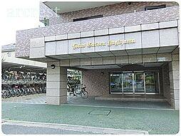 ライオンズガーデン萩山