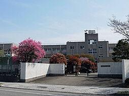 新木戸小学校