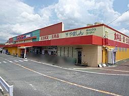 ヤマトー桜井南...