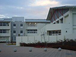 阿弥陀小学校 ...