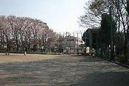 東大宮中央公園