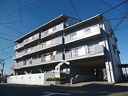 大阪府羽曳野市伊賀3丁目の賃貸マンションの外観