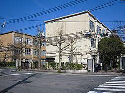 中学校加茂川中...