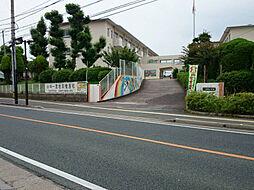 東郷小学校