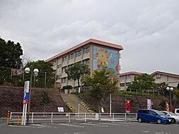 桜ケ丘西小学校...