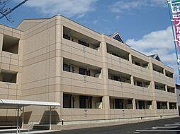 愛知県一宮市小信中島字萱場の賃貸マンションの外観