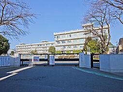 武蔵野小学校