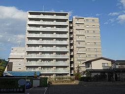 コンフィール東松山 203