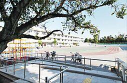 西が丘小学校