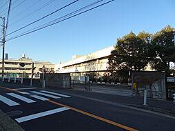 横浜市立松本中...