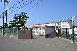 学区 松林中学...
