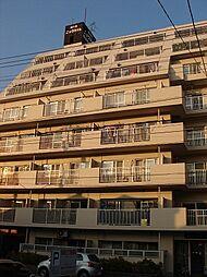 ニックハイム横須賀中央第5[204号室]の外観
