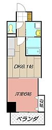 THE SQUARE Suite Residence[405号室]の間取り