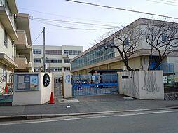 泰野小学校