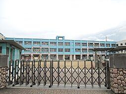 南高安小学校
