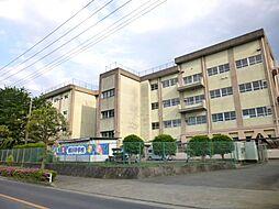 横川中学校距離...