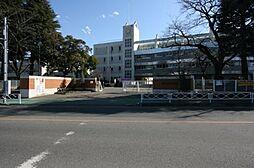 小学校桜ヶ丘小...