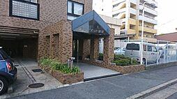 サン・ピボット鳩岡