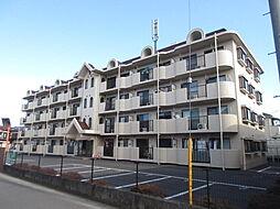 サンクレスト武蔵藤沢[406号室号室]の外観