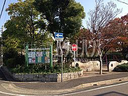 梅の木公園