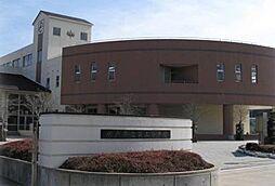 学区:水戸第三...