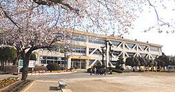 学区:奥野小学...