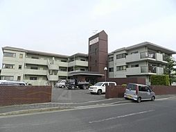 ニューシャトー長岡[2階]の外観
