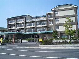 大宝東小学校