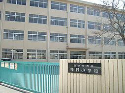 神野小学校