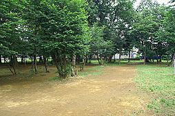 宮内緑地公園(...