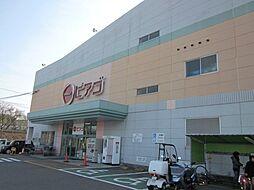 ピアゴ武豊店