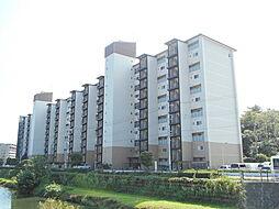 狛江ハイタウン