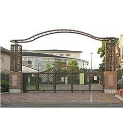 松井小学校